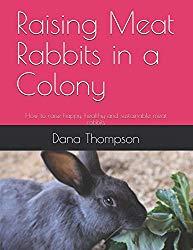 Raising Meat Rabbits In A Colony
