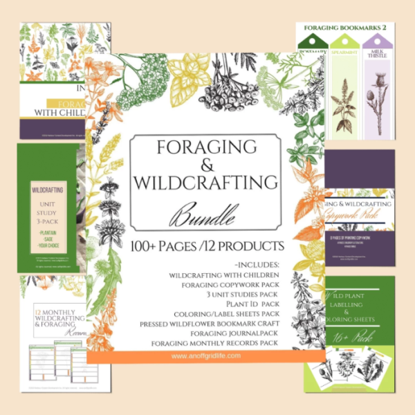 Foraging & Wildcrafting With Children...
